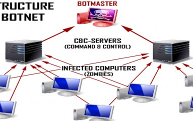 Botnet Detection and Removal: Methods & Best Practices