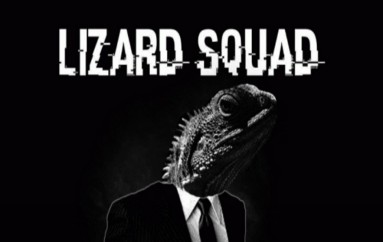 Lizard Squad: The Black Hat Hacking Group Hacked Thousands of Cameras to attack Websites
