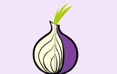 Tor Browser Zero-Day Exploit Revealed Online