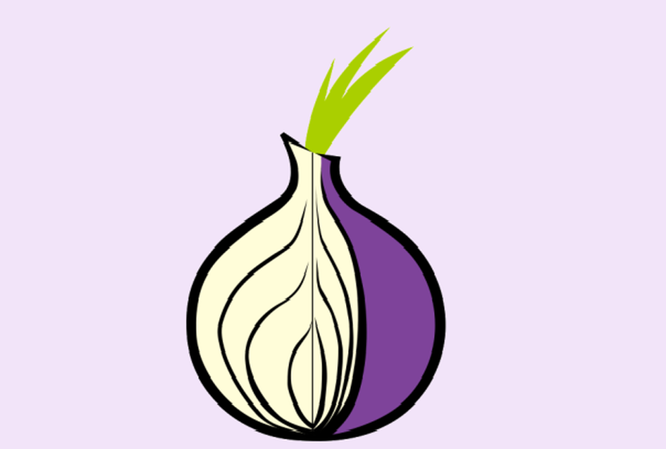Браузер Tor повышает риски потери криптовалюты