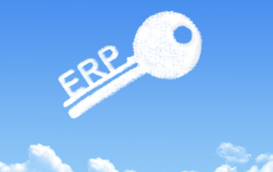 Why Security Should Be A Priority For An ERP Ecosystem