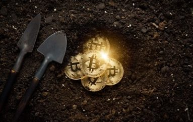 Elasticsearch Crypto-Miner Sinkholes the Competition