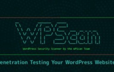 WPScan – Penetration Testing  Tool to Find The Security Vulnerabilities in Your WordPress Websites