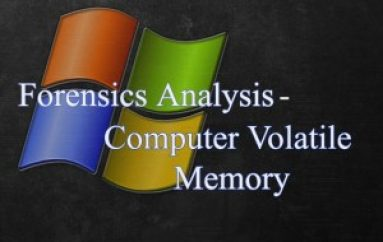 Live Cyber Forensics Analysis with Computer Volatile Memory