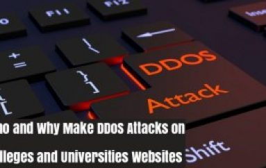 Who and Why Make DDoS Attacks on The Site of Colleges and Universities?