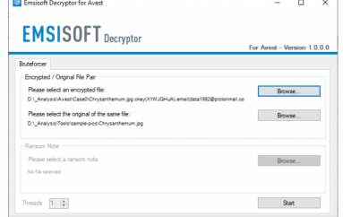 Emsisoft Released a New Free Decryption Tool for the Avest Ransomware