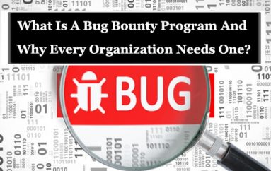 Bug Bounty Program – Why Every Organization Needs One?
