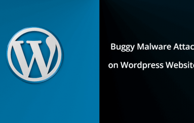 Buggy Malware Attack on WordPress Websites by Exploiting Newly Discovered Theme & Plugin Vulnerabilities