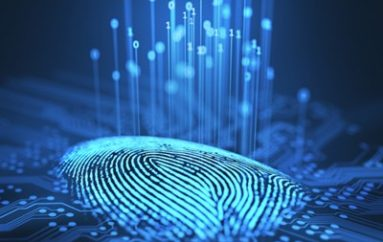 Artificial Fingerprint Ring Could Combat Biometric Data Theft