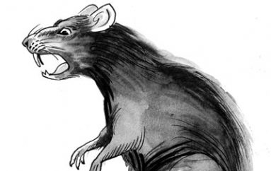 European Energy Firm Targeted by RAT Linked to Iran