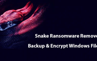 Snake Ransomware That Written in Golang Language Removes Backup Shadows Copies & Encrypt Windows Files