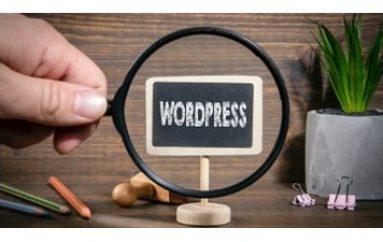 WordPress Hacker Attacks One Million Sites in a Month