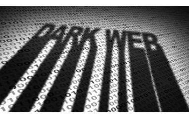 Wishbone Breach: 40 Million Records Leaked on Dark Web