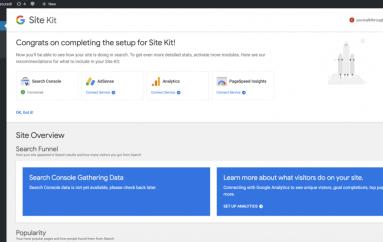 Google WordPress Site Kit Plugin Grants Attacker Search Console Access