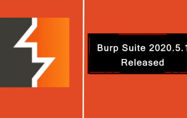 Burp Suite 2020.5.1 Released – Security Bugs Fixed & Improvements to the HTTP Message Editor