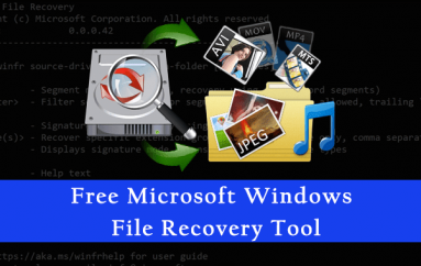 Accidentally Deleted an Important File? Free Microsoft Windows File Recovery Tool Help You to Recover Data