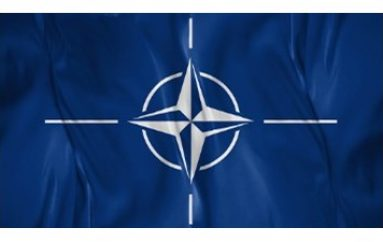 NATO Condemns Cyber-Attacks
