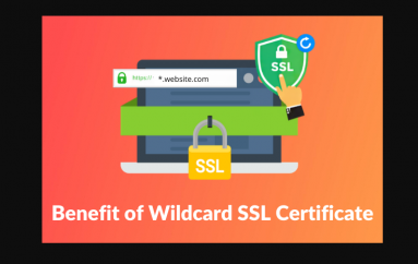 Main Issues a Wildcard SSL Certificate Can Solve